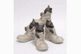 Katt i sko